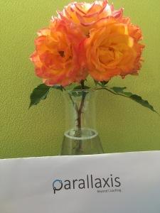 Parallaxis3
